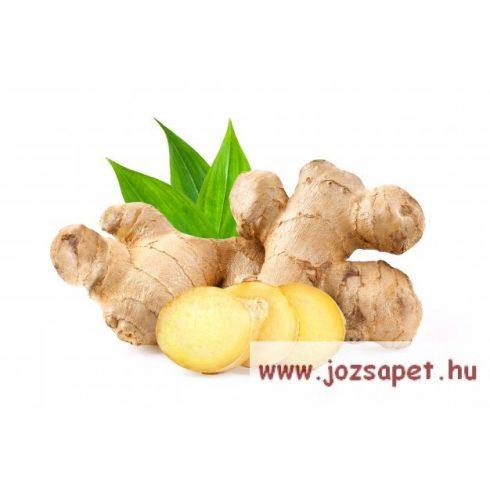 Apotheke - Citrom és Gyömbér Tea, 20 filter - Premier Selection