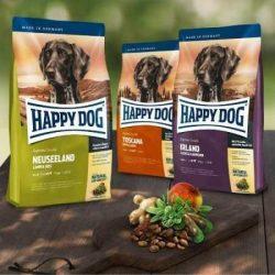 Happy Dog Sensible