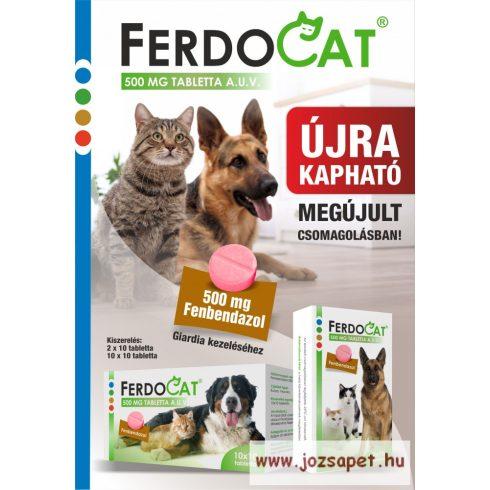 Ferdocat tabletta 20db 500mg
