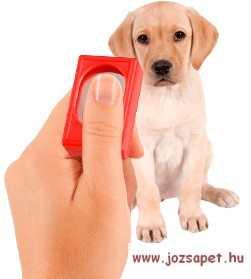 Klikker--hatékony eszköz a kutya tanítása, kiképzése során