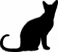 étvágytalan macska, válogatós macska