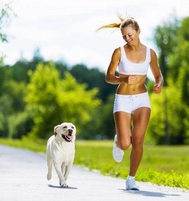 Mozdulj ki a kutyáddal!