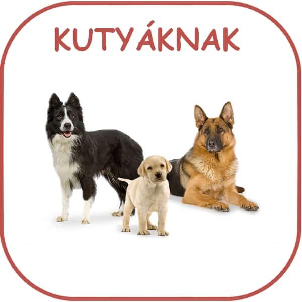 Kutyatáp, felszerelés, vitamin, táplálékkiegészítő...