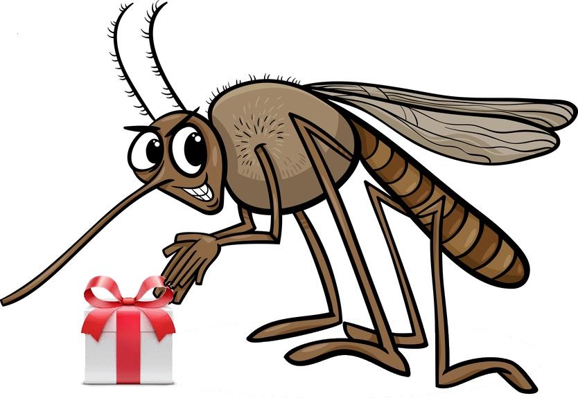 Szúnyogok, szívférgesség