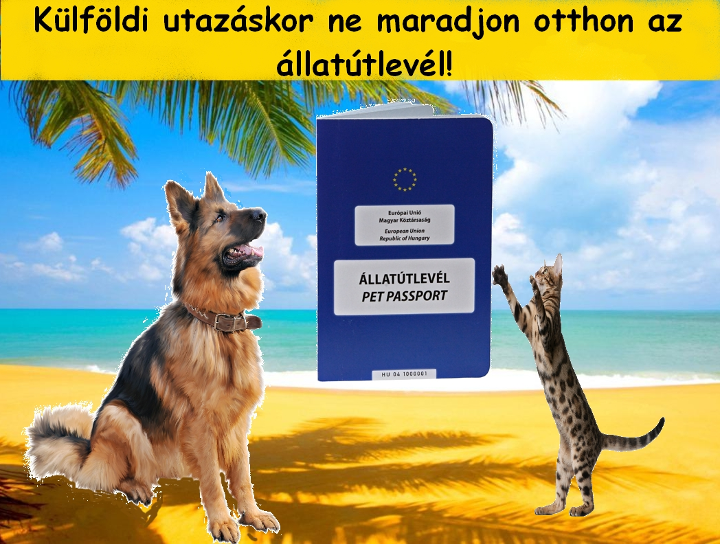 Állatútlevél, külföldi út kedvencünkkkel