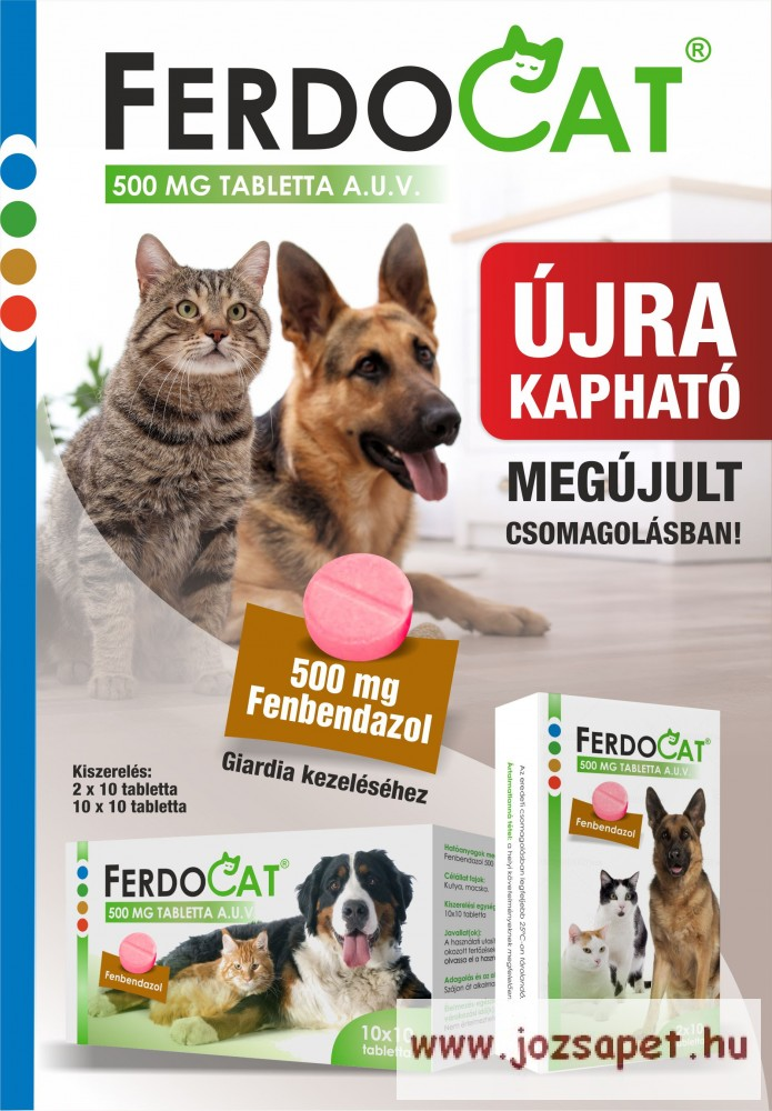Ferdocat tabletta 100db 500mg