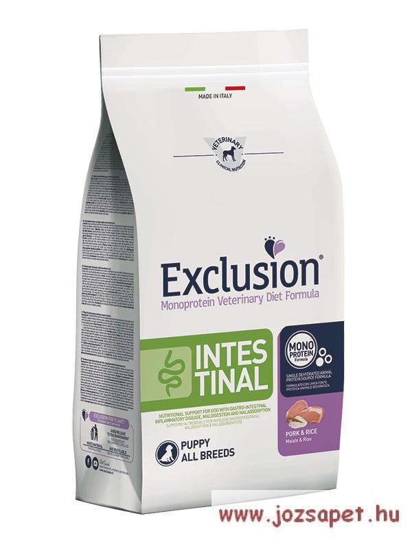 Vet Exclusion Intestinal Pork & Rice Puppy 12,5kg